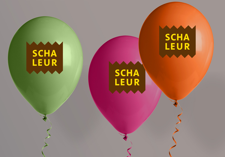 logo1-schaleur